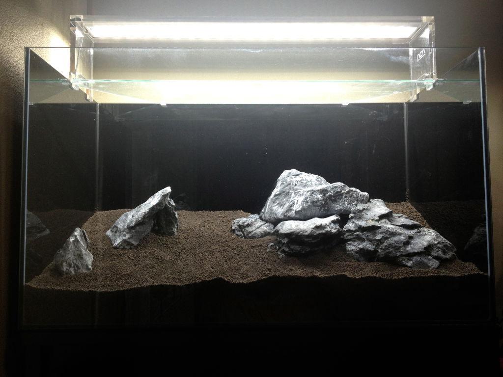 龍王石で石組みレイアウト