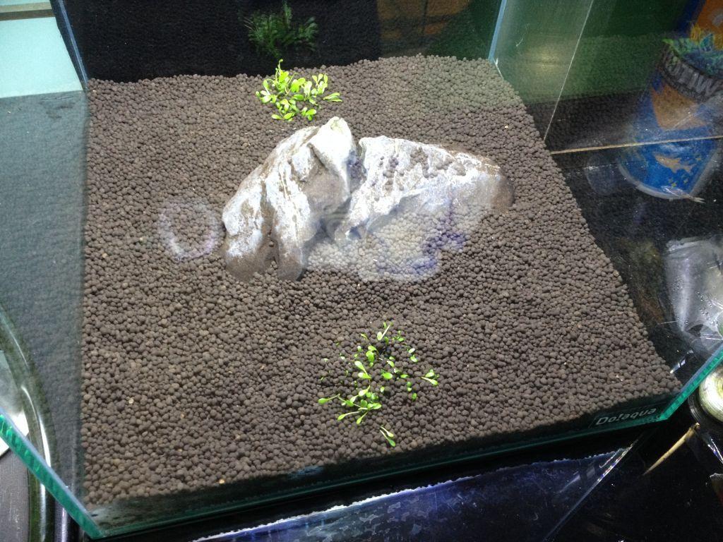 龍王石とグロッソ
