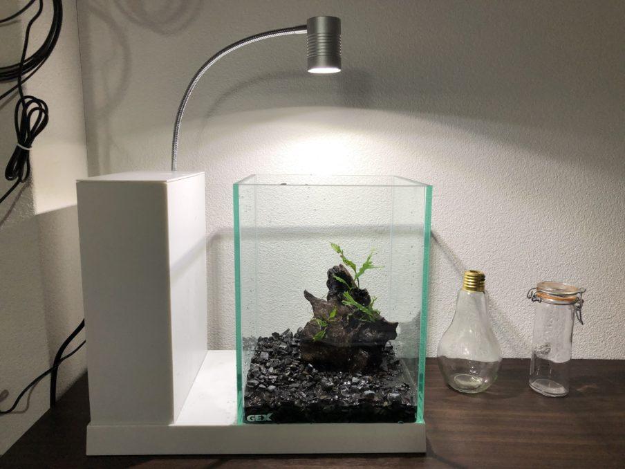 GEX AQUA-Uのガラス透明度